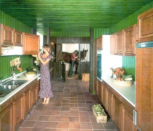 Equine Friendly Design 48s Interior Design Susanna Forrest Stunning 1970S Interior Design