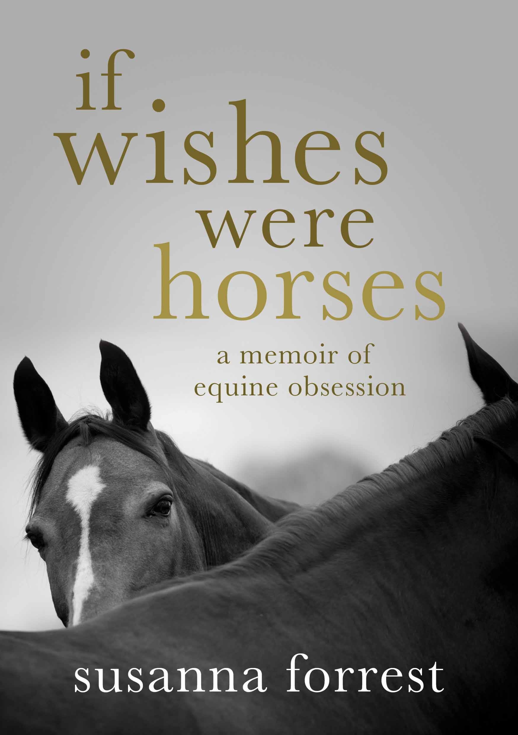 Essay of if wishes were horses